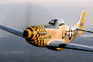 Featured Performers P-51D
